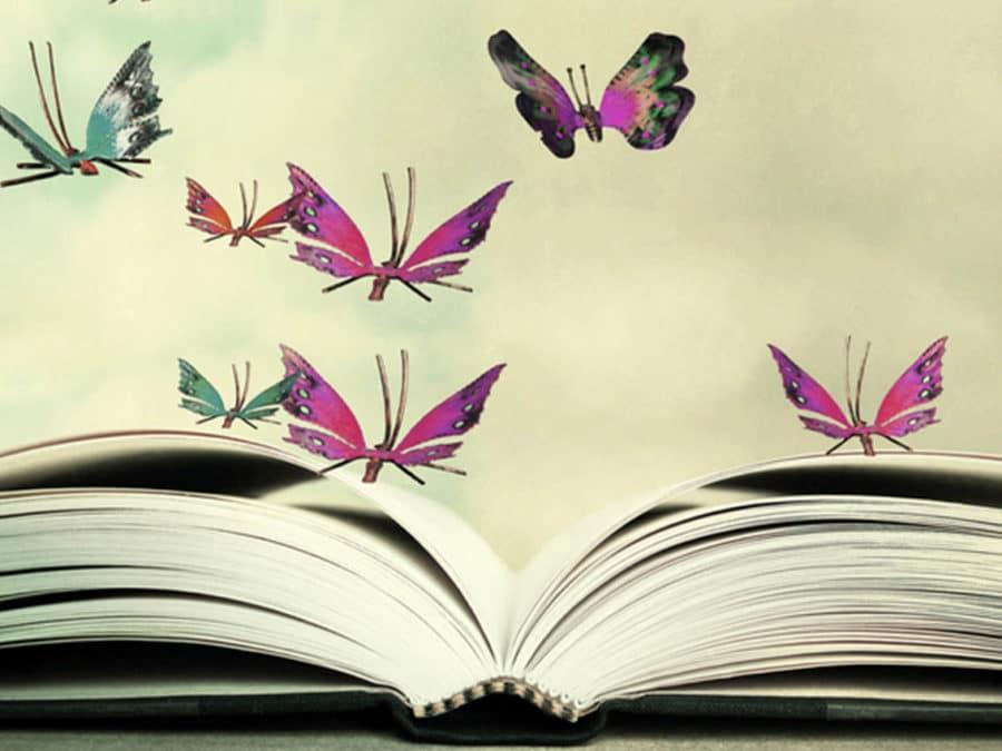 Expodif - Grossiste en déstockage de livres neufs à prix réduit